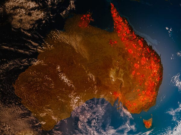 Ketan Joshi interview. Australia: how the devastating bush fires are making the government reform