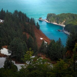Protection Restored to America's Largest National Forest